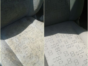 Limpieza tapicería coches, Rotil